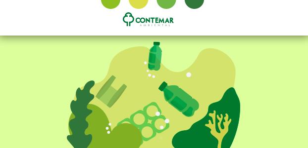 Saiba quais são as consequências do lixo mal descartado